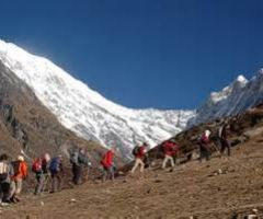 Advantages and Health Benefits of Trekking