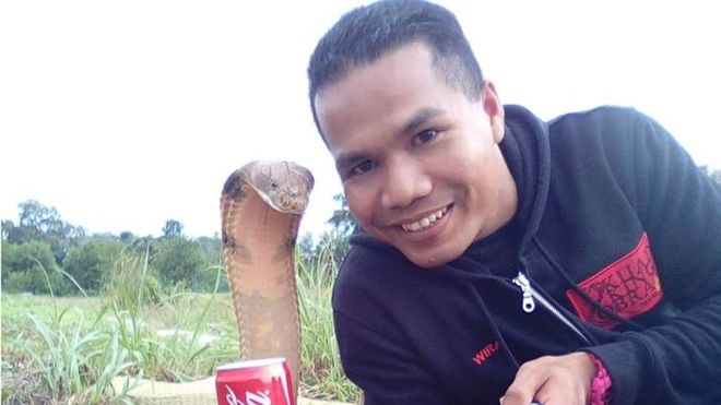 Malaysian 'snake-handling celebrity' dies of cobra bite