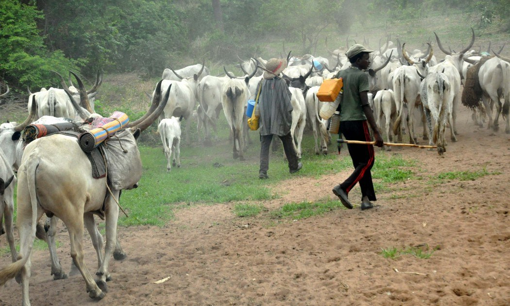 Again, herdsmen attack Benue villagers, 16 killed
