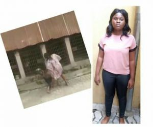 Why I Locked My Cousin In A Dog's Cage — Suspect