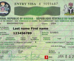 Nigeria Issues 58,000 Visas To Foreign Investors At Lagos Airport
