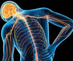 Hope for millions living with chronic pain.html
