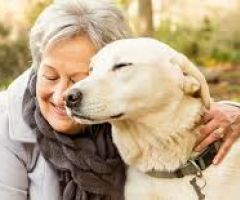 Having Pets Can Improve Our Health .html