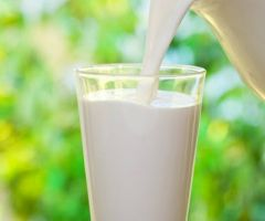 Other Source Of Milk That Are More Better Than Cow Milk .html