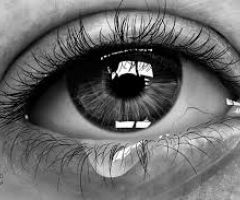 See What You Don't Know About Tears  .html
