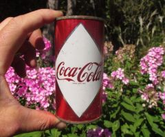 Coca-Cola can be Very Useful in Your Garden -This is how.html