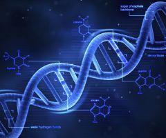 Interesting Facts About the DNA .html